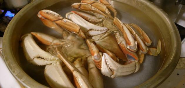 طريقة طبخ سرطان البحر
