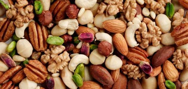 أهم مصادر البروتين