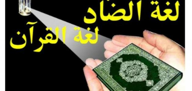 تقرير عن أهمية اللغة العربية