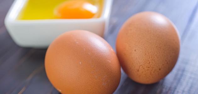 فوائد أكل البيض النيئ