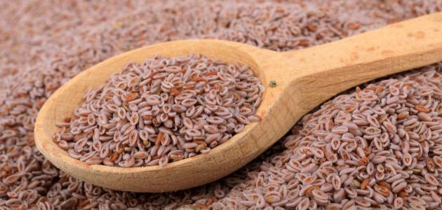 فوائد بذرة القاطونة للتخسيس