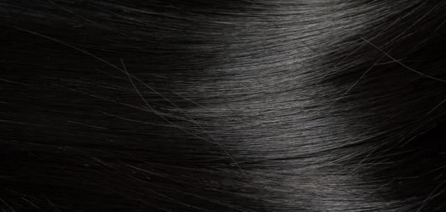 55d77324a وصفات لتنعيم الشعر الجاف - موضوع
