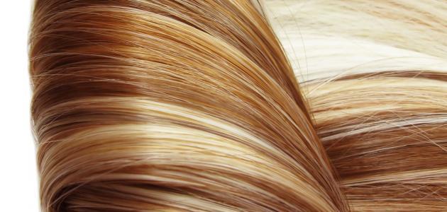 وصفات لزيادة كثافة الشعر منزلياً