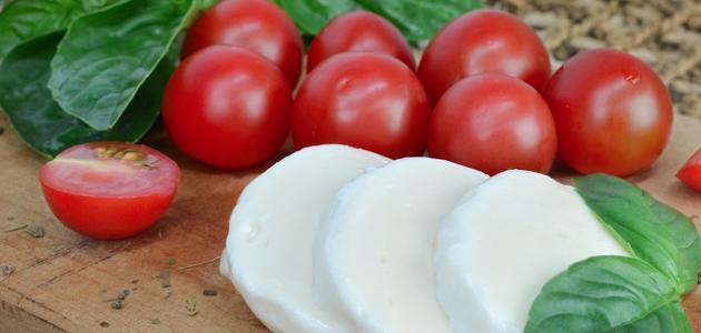طريقة عمل الجبنة البيضاء