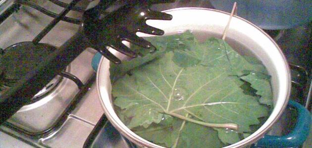 طريقة كبس ورق العنب
