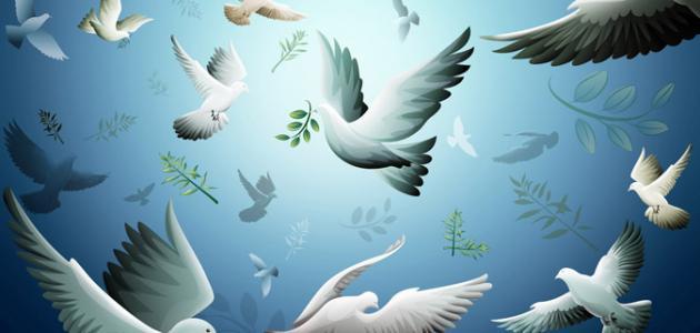 بحث عن أهمية السلام