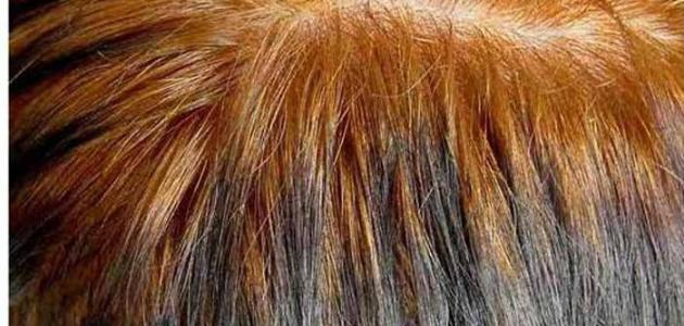 طريقة سحب لون الحناء من الشعر