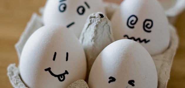 فوائد البيض وأضراره