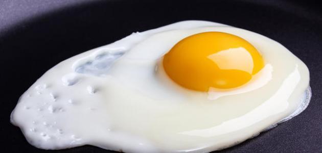 فوائد بياض البيض للأطفال
