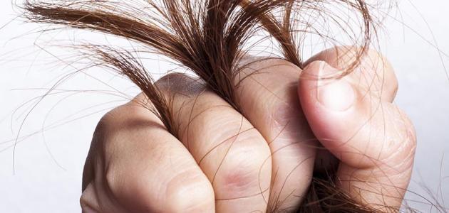 طريقة لعلاج تقصف الشعر
