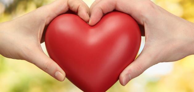 صوره اجمل كلمات قوية عن الحب