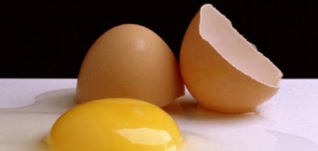 فوائد البيض للشعر مع الحناء