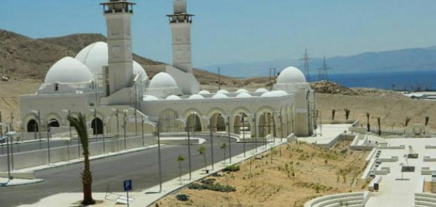 أين يقع مسجد الشيخ زايد
