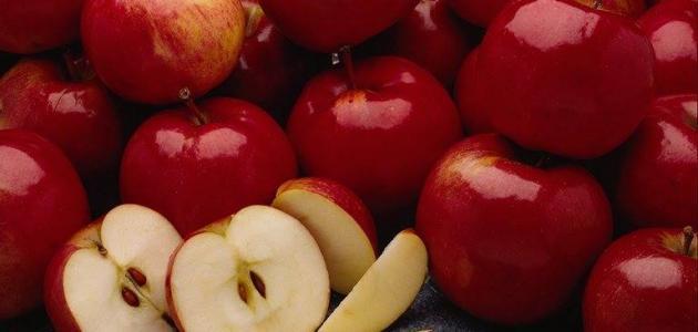 فوائد أكل بذور التفاح