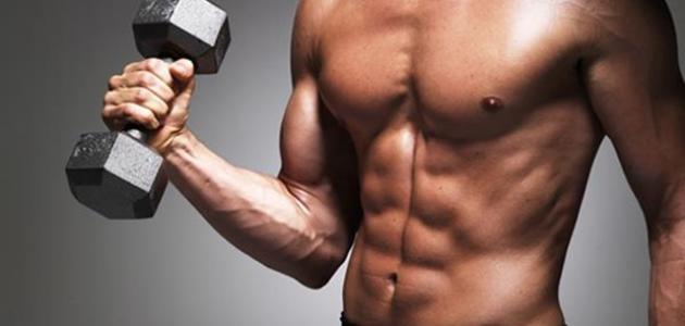 كم عدد عضلات جسم الانسان