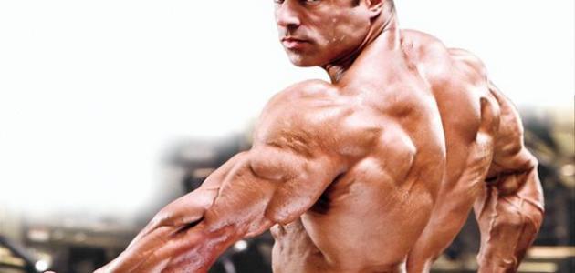 كيف أقوي عضلاتي