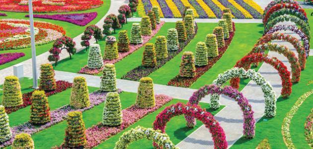 أين تقع حديقة الزهور في دبي موضوع