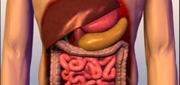 ما هي أعراض صفار الكبد