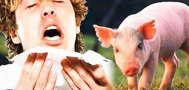 ما هي أعراض مرض إنفلونزا الخنزير