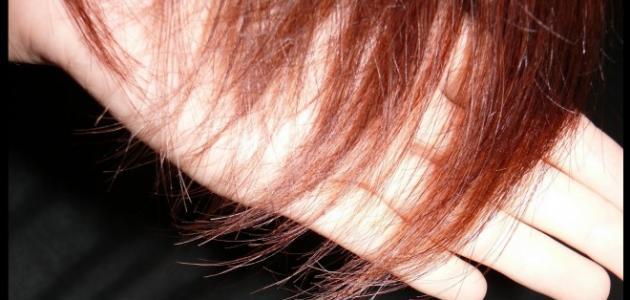 كيفية علاج الشعر المتقصف