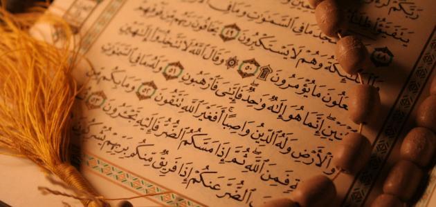 تحفيظ القرآن بالجبيل on Twitter: