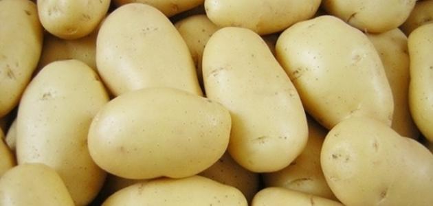 كيف تزرع البطاطا