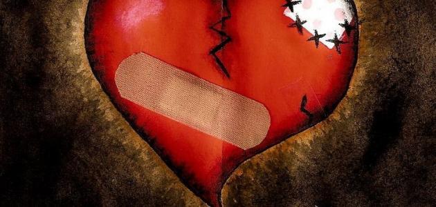 القلب سلم لك امره