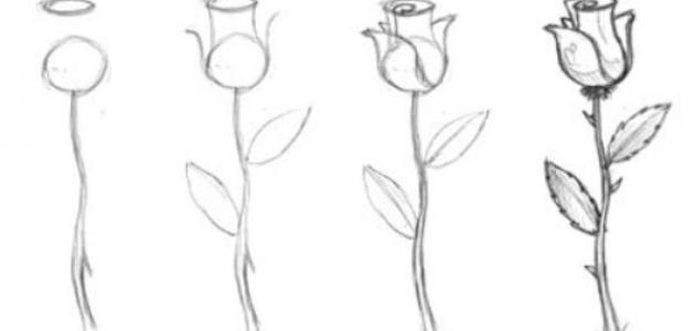 كيف أتعلم الرسم للمبتدئين