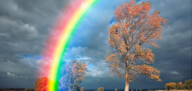 Interpretation of the phenomenon of the rainbow
