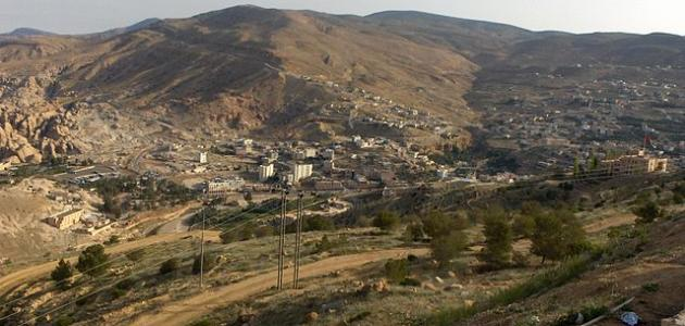 أين يقع وادي موسى