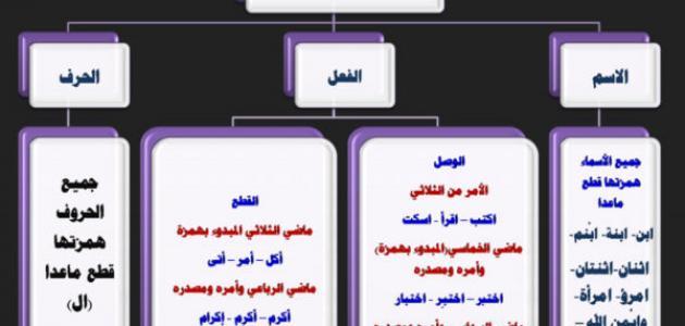 قواعد كتابة الهمزة في اللغة العربية pdf