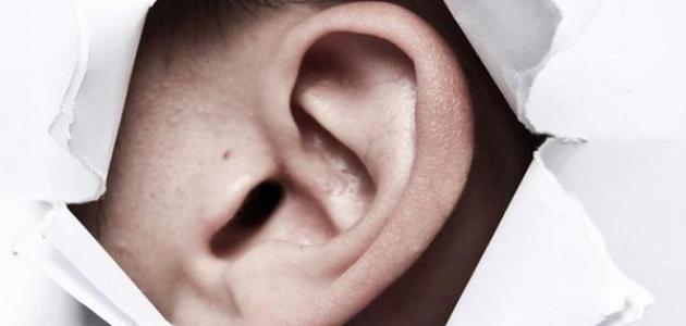 أنشأ قسم الأذن والأنف والحنجرة بمستشفى دبي في مبادرة مميزة عيادة متخصصة  لأمراض السمع والتوازن تم تجهيزها بأحدث الأجهزة الطبية لتشخيص وعلاج وتأهيل  أمراض ...