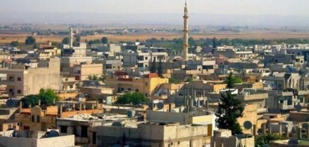 أين تقع مدينة عين العرب