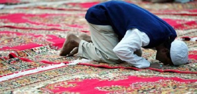 كم عدد ركعات الصلوات الخمس