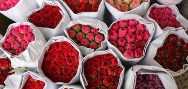 كلام عن الورود