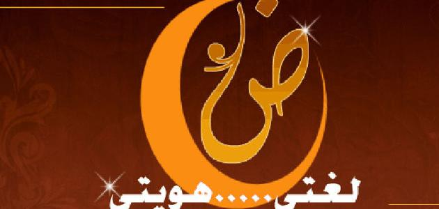 عبارات قصيرة عن اللغة العربية