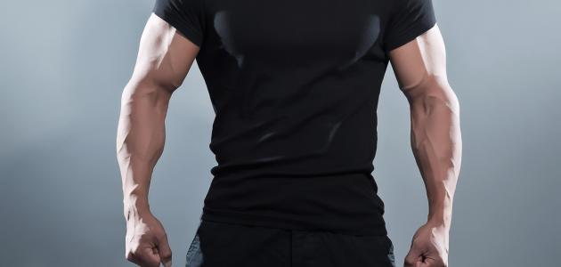 تضخيم العضلات بسرعة