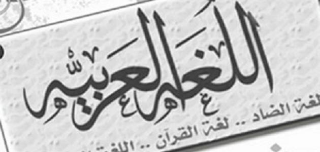 تعبير اللغة العربية موضوع