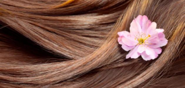طريقة صبغ الشعر المصبوغ سابقاً