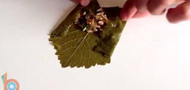 كيف نلف ورق العنب