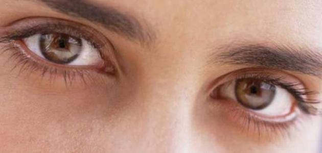 كيف أفهم لغة العيون