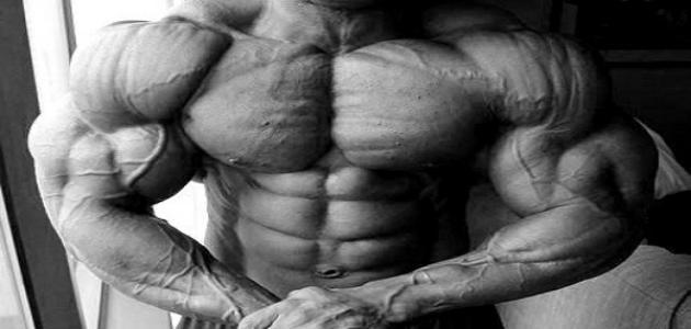 كيف أبني عضلاتي