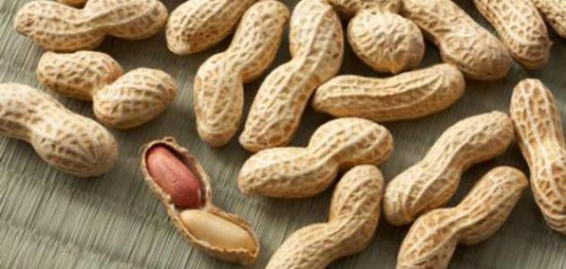 فوائد أكل الفول السوداني