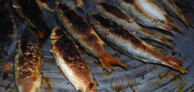 طريقة شوي السمك على الصاج