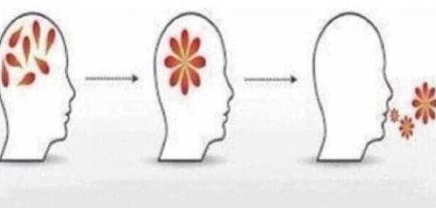 كيف أرتب أفكاري