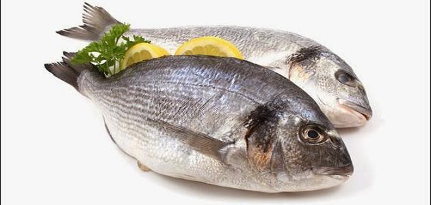 كيف أعرف أن السمك طازج