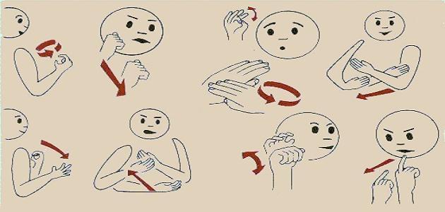 كيف أتعلم لغة الإشارة
