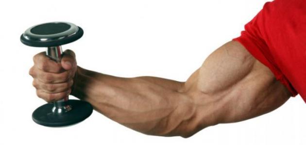 كيف أبرز عضلات اليد