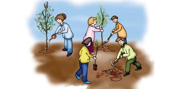 كيف يؤثر الإنسان على البيئة