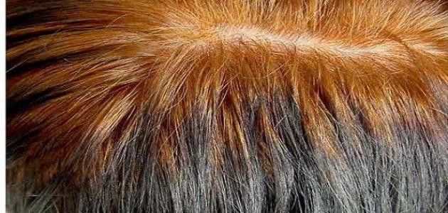كيف ألون شعري بدون صبغة